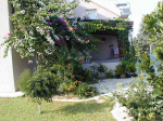 House for sale in Pentakomo - Cyprus